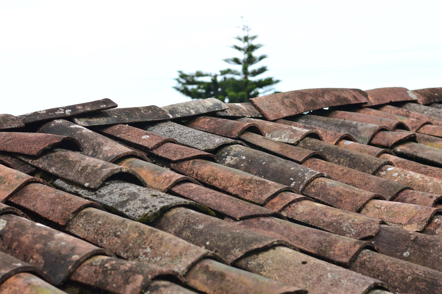 5 Factors that Affect the Cost of Roof Replacement